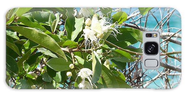 Caribbean Honeysuckle Galaxy Case by Margaret Brooks