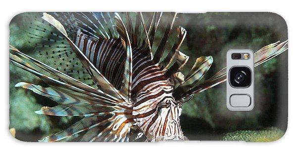 Caribbean Lion Fish Galaxy Case by Amy McDaniel