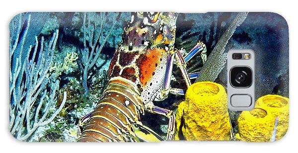 Caribbean Reef Lobster Galaxy Case by Amy McDaniel