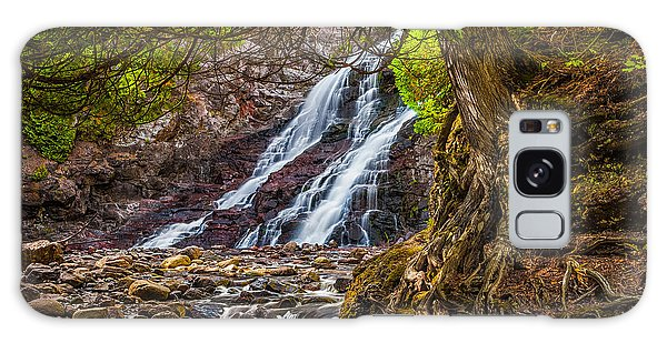 Caribou Falls In Fall Galaxy Case