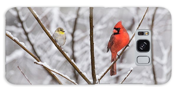 Goldfinch And Cardinal Galaxy Case