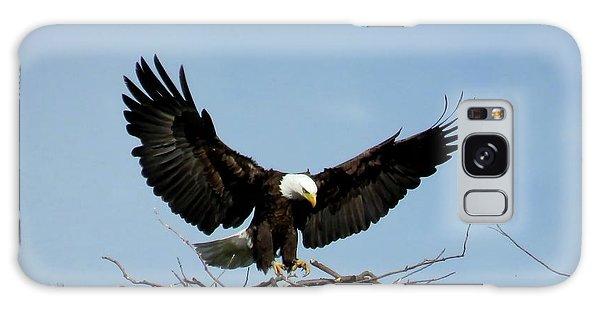 Cape Vincent Eagle Galaxy Case