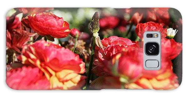 Carnival Of Flowers 04 Galaxy Case