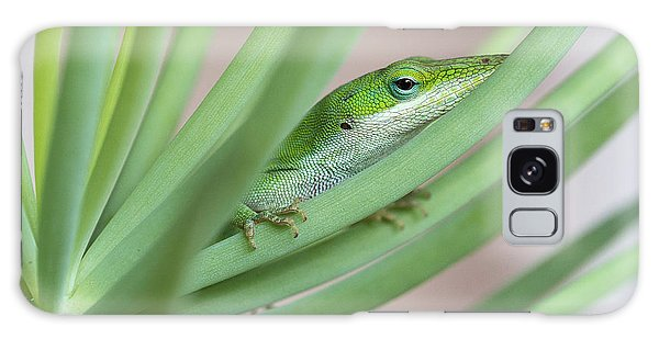 Carolina Anole Galaxy Case