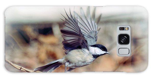 Carolina Chickadee - Come Fly With Me  Galaxy Case