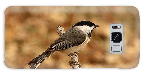 Carolina Chickadee On Branch Galaxy Case