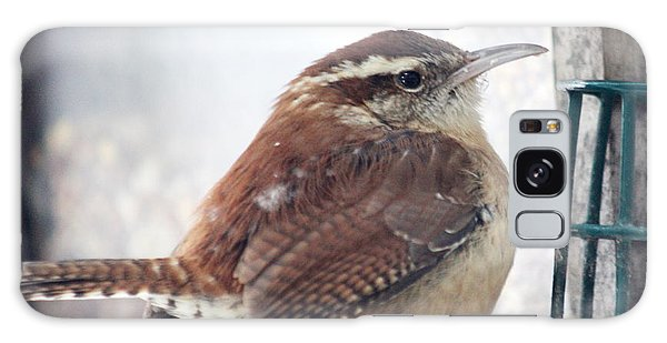 Carolina Wren Galaxy Case by Diane Merkle