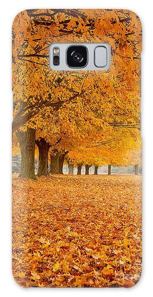 Carpet Of Gold II Galaxy Case by Butch Lombardi
