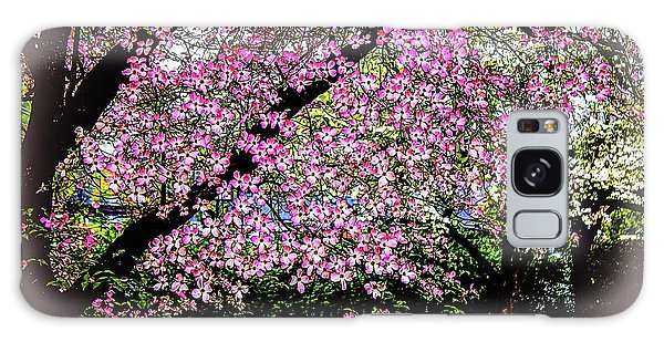 Cascading Dogwood Copyright Mary Lee Parker 17, Galaxy Case