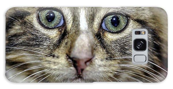 Cat 1 Galaxy Case