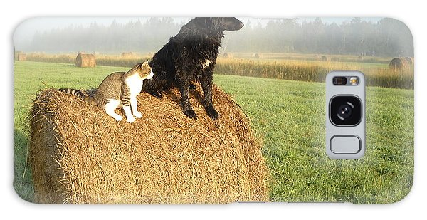 Cat And Dog On Hay Bale Galaxy Case by Kent Lorentzen