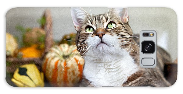 Cat And Pumpkins Galaxy Case by Nailia Schwarz