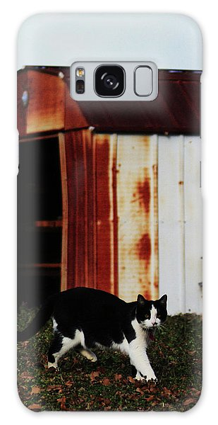 Cat And The Tool Shed Galaxy Case by Kim Henderson