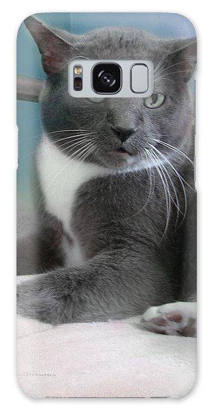 Cat Boticas Portrait  Galaxy Case