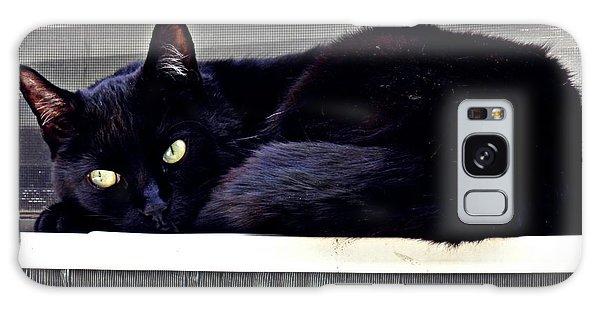 Cat Conditioner Galaxy Case