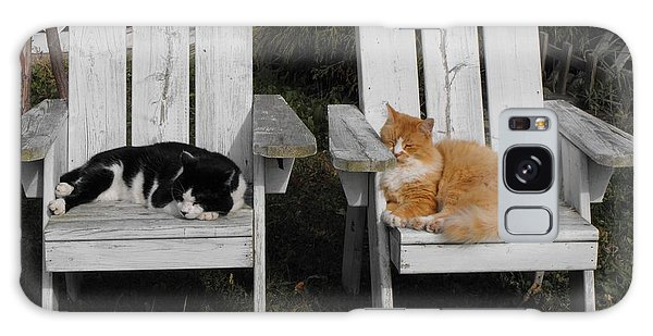 Cat Days Of Summer Galaxy Case by David and Lynn Keller