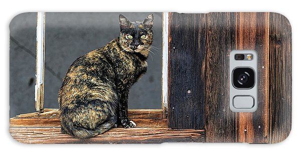 Cat In A Window Galaxy Case