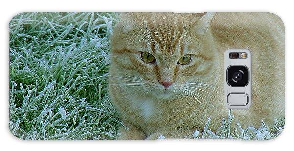 Cat In Frosty Grass Galaxy Case