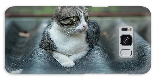 Cat In The Cradle Galaxy Case