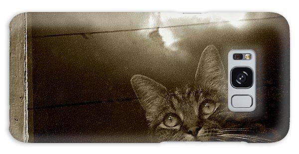 Cat In The Window Galaxy Case