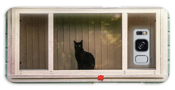 Cat In The Window Galaxy Case by Robert Frederick