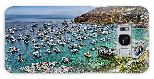 Catalina Island  Avalon Harbor Galaxy Case