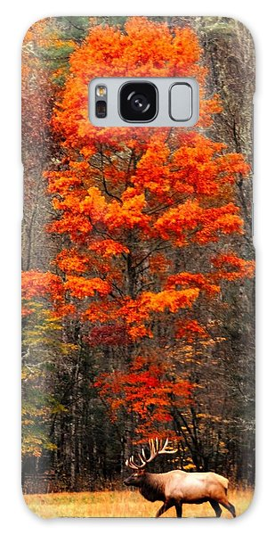 Cataloochee Color Galaxy Case