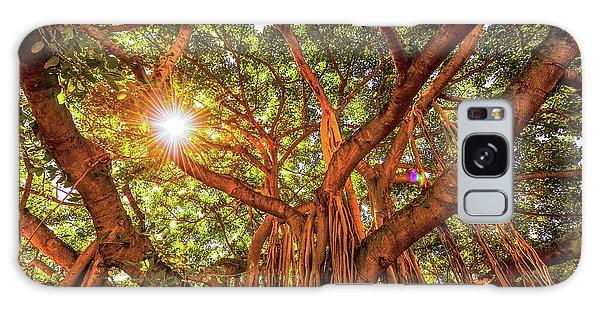 Catch A Sunbeam Under The Banyan Tree Galaxy Case