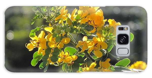 Catchlight Bee Over Yellow Blooms Galaxy Case