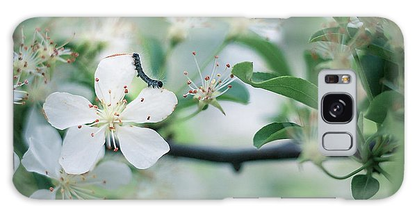 Caterpillar On A Tree Blossom Galaxy Case