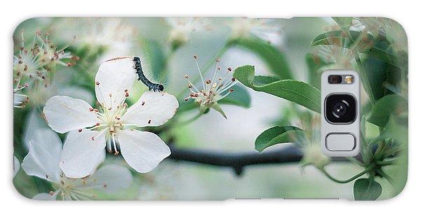 Caterpillar On A Tree Blossom Galaxy Case