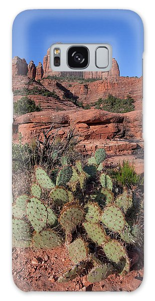 Cathedral Rock Cactus Grove Galaxy Case