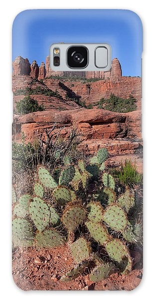 Cathedral Rock Cactus Grove Galaxy Case