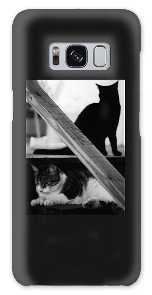 Cats Pose For Money And Fame Galaxy Case
