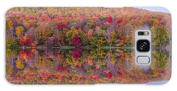 Catskill Panorama 2 Galaxy Case