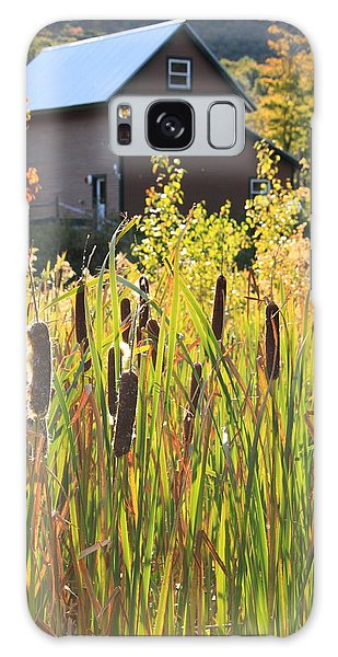 Cattails And Barn Galaxy Case