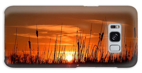 Cattails And Twilight Galaxy Case