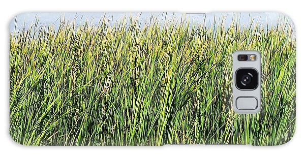Padre Island National Seashore Galaxy S8 Case - Cattails At The Beach by Gary Richards