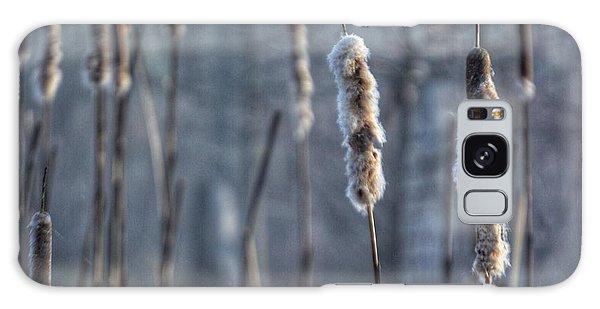 Cattails In The Winter Galaxy Case
