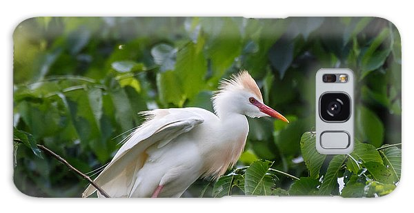 Cattle Egret At Rest Galaxy Case
