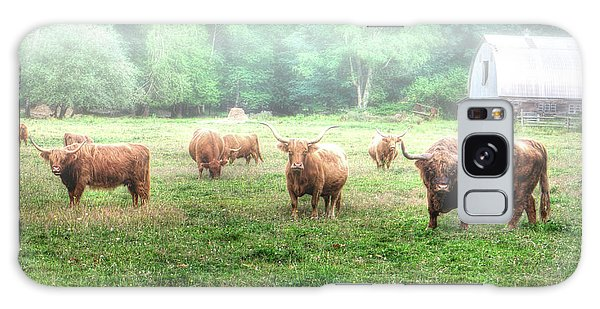 Cattle In The Mist Galaxy Case