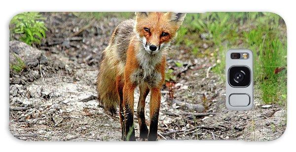 Cautious But Curious Red Fox Portrait Galaxy Case by Debbie Oppermann
