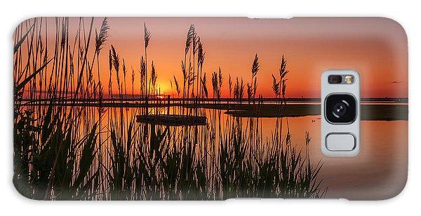 Cedar Beach Sunset In The Reeds Galaxy Case