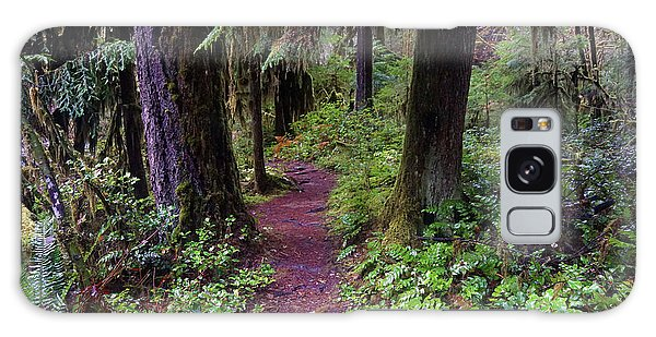 Cedar Creek Trail #3 Galaxy Case