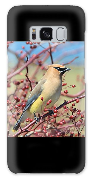 Galaxy Case featuring the photograph Cedar Waxwing by Debbie Stahre