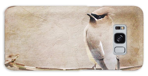 Cedar Waxwing Painting Effect Galaxy Case
