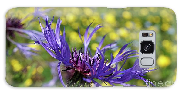 Centaurea Montana Flower Galaxy Case