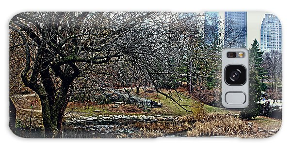 Central Park In January Galaxy Case by Sandy Moulder