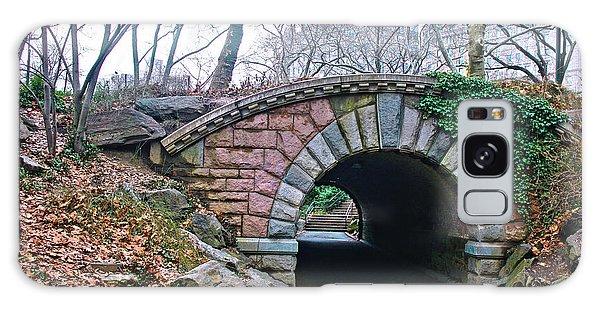 Central Park, Nyc Bridge Landscape Galaxy Case