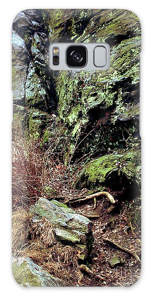 Central Park Rock Formation Galaxy Case by Sandy Moulder